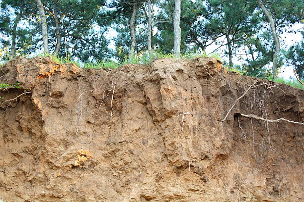 Soil erosion Soil erosion eroded stock pictures, royalty-free photos & images
