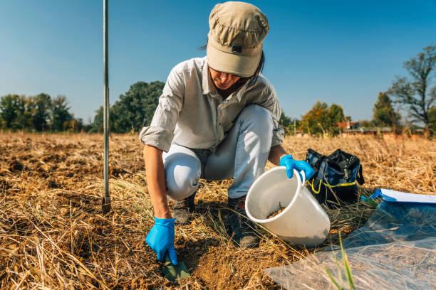 Bodenfruchtbarkeitsanalyse. Weibliche Agronomistin nimmt Bodenproben – Foto