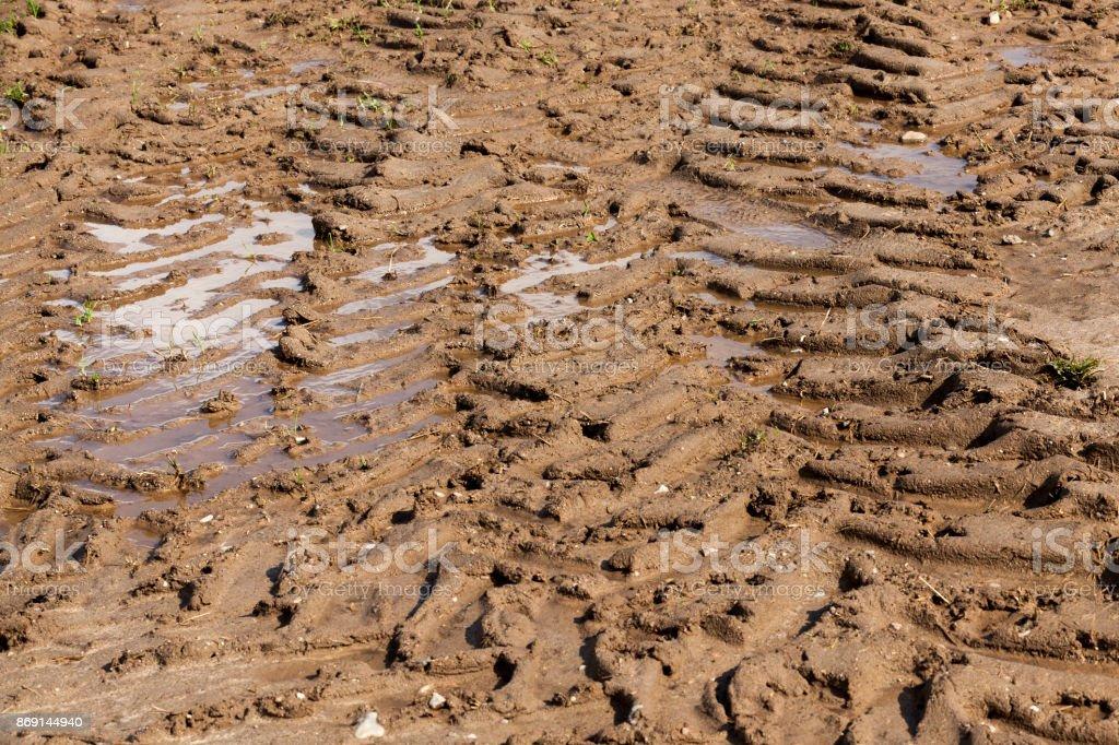 soil field stock photo