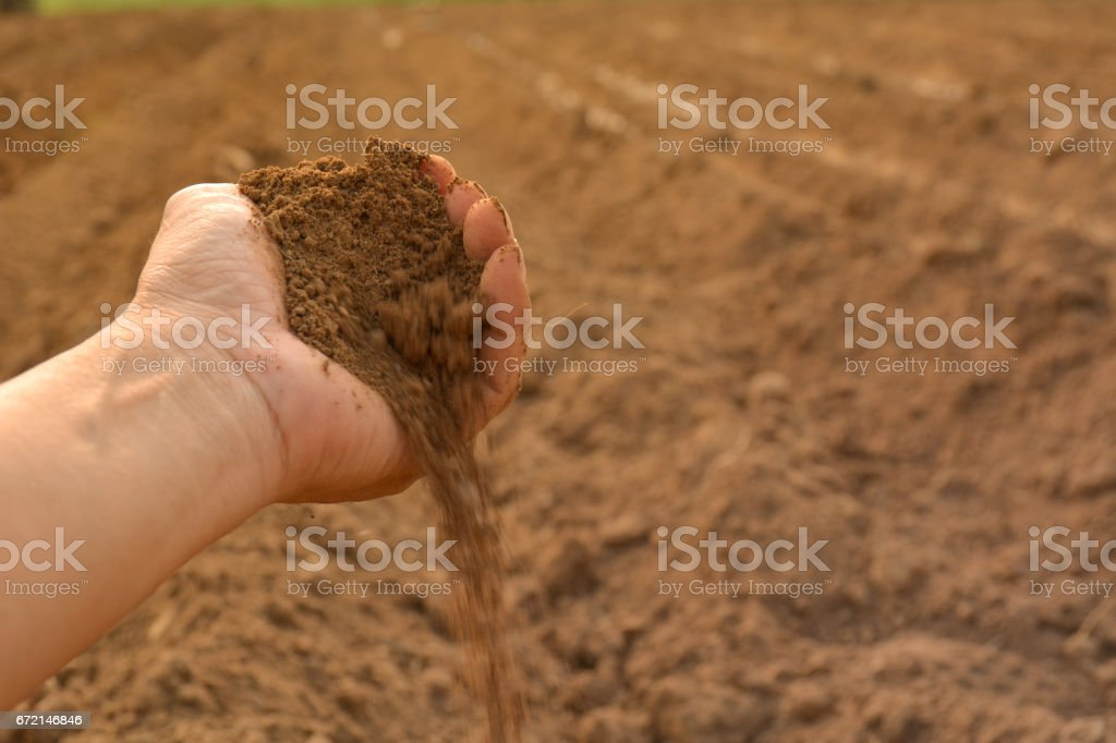 Soil in hand cultivated dirt. earth or ground stock photo