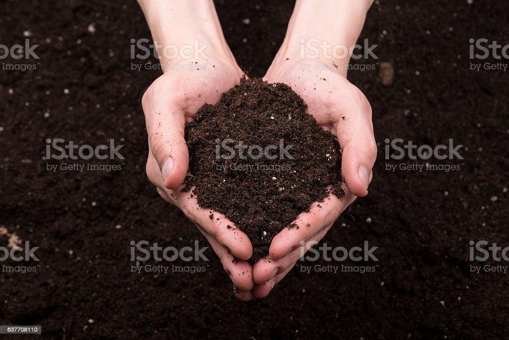 Tierra en las manos - foto de stock