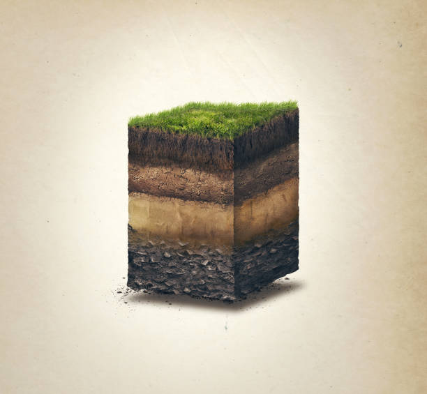 Soil layers. Cross section soil layers. 3D illustration, light background stock photo