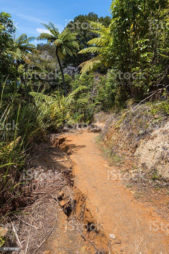 soil liquefaction and landslide after earthquake stock photo