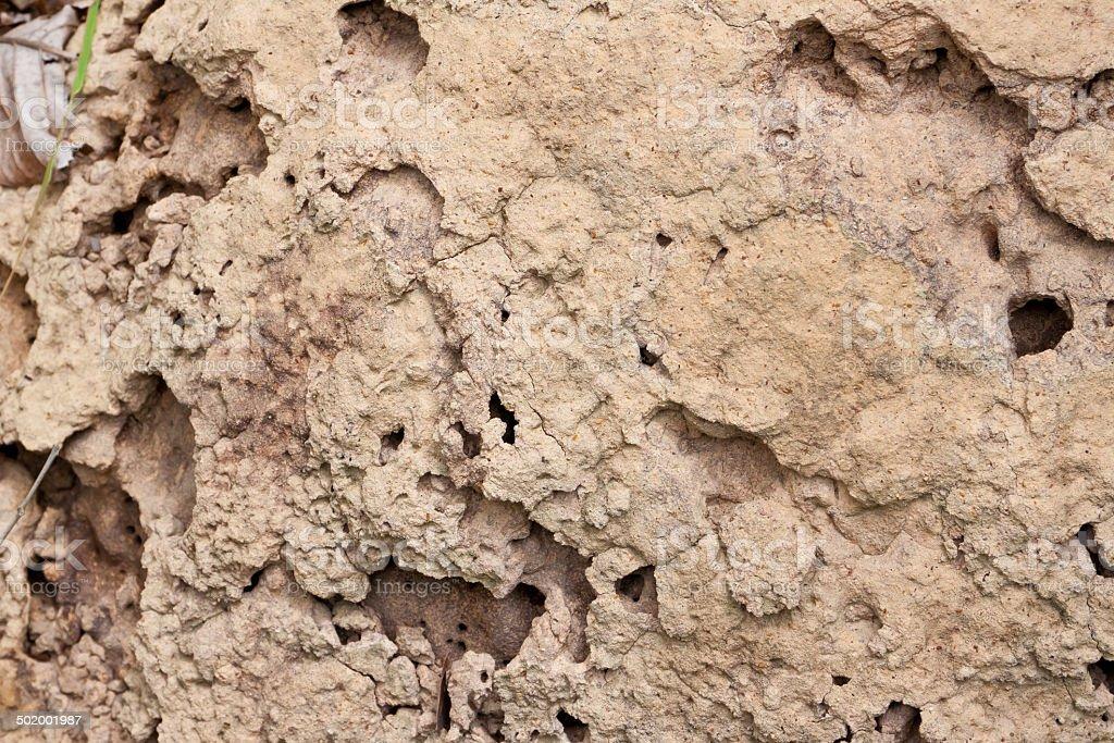 Soil of termite nests. stock photo