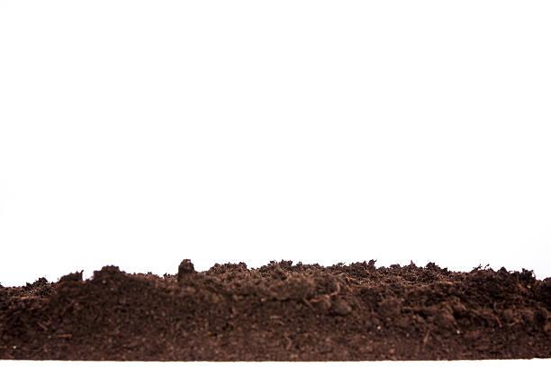 Boden oder Schmutz-Abschnitt isoliert auf weißem Hintergrund – Foto