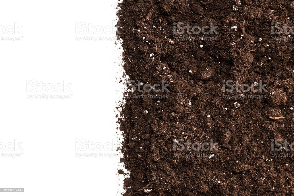 Soil or dirt section isolated on white background stock photo