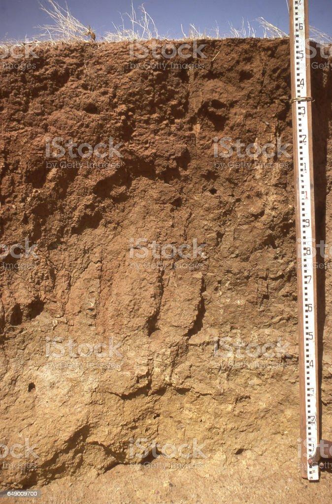 Soil profile and yardstick in northern Yatenga Burkina Faso Africa stock photo