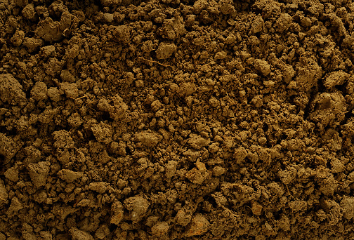 Close-up of real natural soil surface,High resolution image