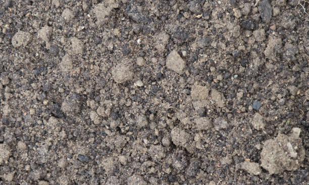 Soil texture background stock photo