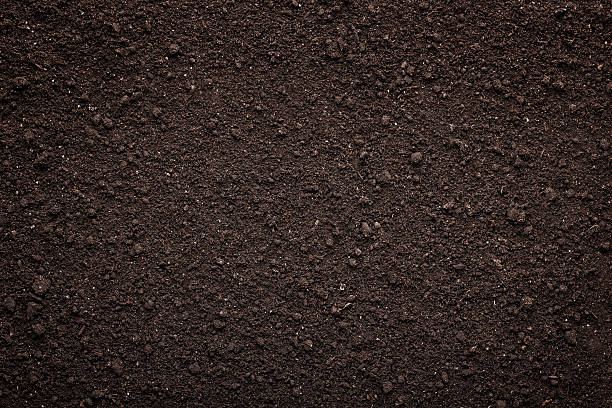 soil texture background - toz stok fotoğraflar ve resimler