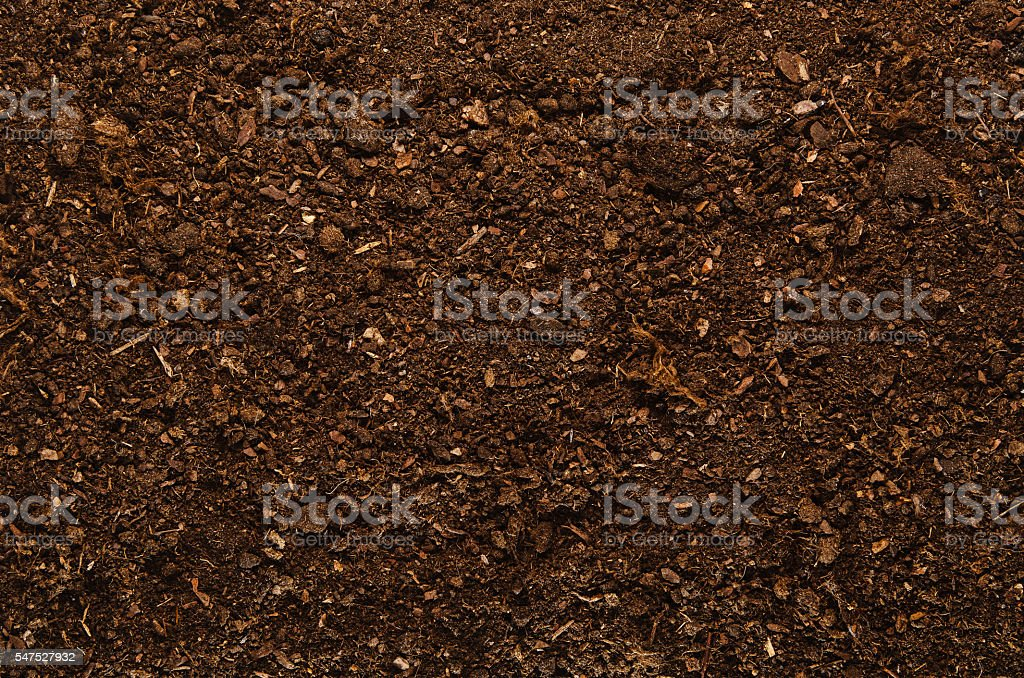 Soil texture background seen from above, top view. stock photo