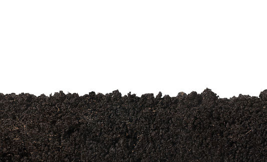 Cross section of soil texture isolated on white background