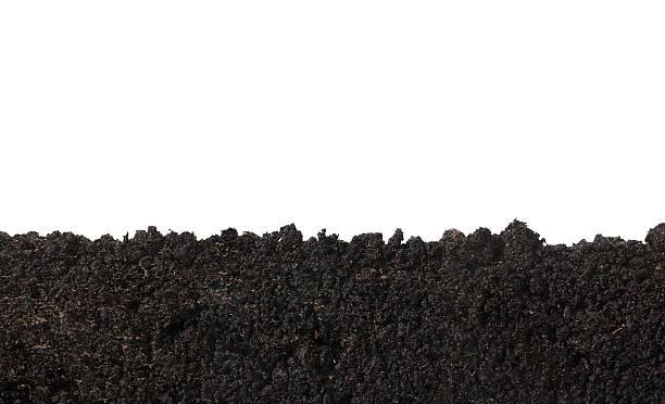 textura do solo - gramado terra cultivada - fotografias e filmes do acervo