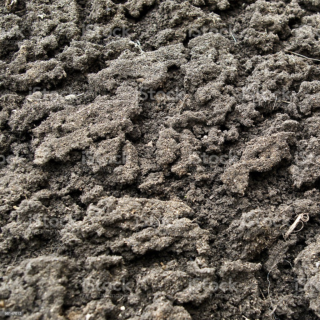 soil with high detail royalty-free stock photo