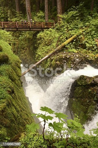 Sol Duc Falls in Olympic National Park and the bridge from which to view the cascading water