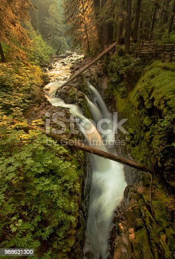 Morning sun hits Sol Duc Falls at Olympic National Park in Washington State.