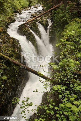 Sol Duc Falls in Olympic National Park Washington