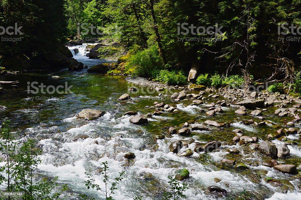 Sol Duc River stock photo