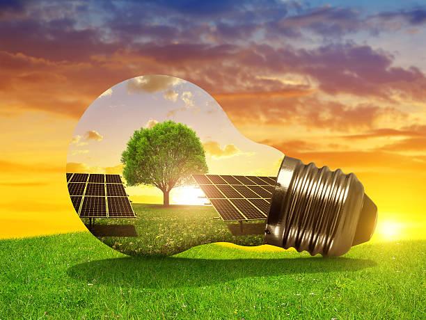 Solar energy panels in light bulb at sunset. stock photo