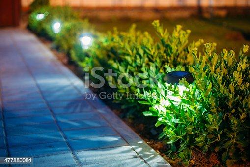 498598201 istock photo Solar Garden Light, Lanterns In Flower Bed. Garden Design 477880084