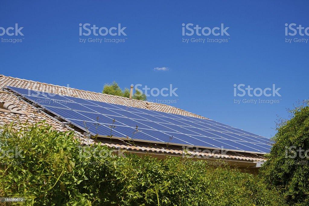 Solar Panels and Greenery royalty-free stock photo