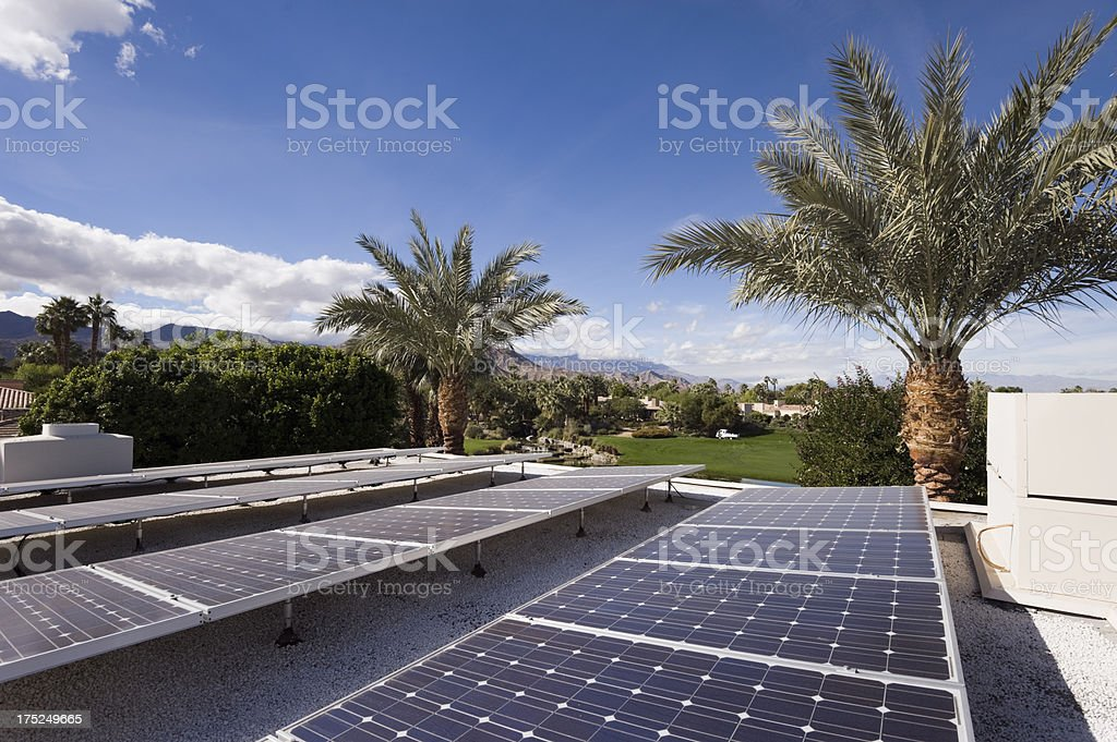 solar panels and palm trees stock photo