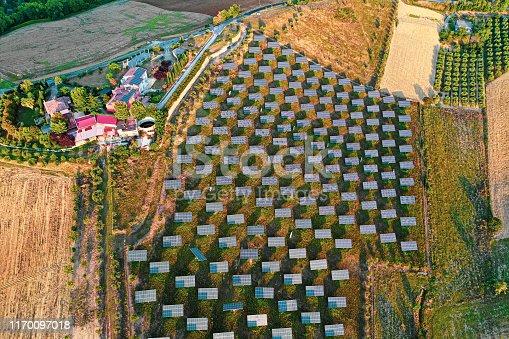 1170098138istockphoto Solar panels fields on the green hills 1170097018