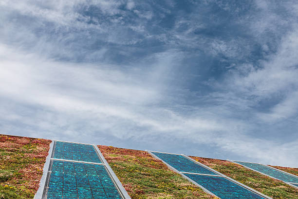 Solar panels on a roof covered with sedum for isolation Solar panels on a new roof covered with green and red sedum for isolation and heating sedum plant stock pictures, royalty-free photos & images