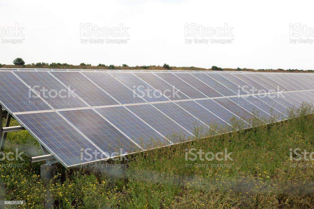 Solar panels on green grass field stock photo