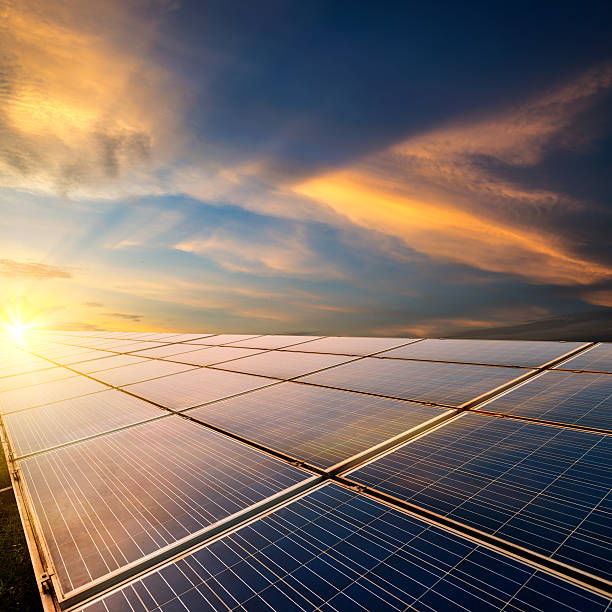 Solar panels Solar panels in the dusk of the evening solar panels photos stock pictures, royalty-free photos & images