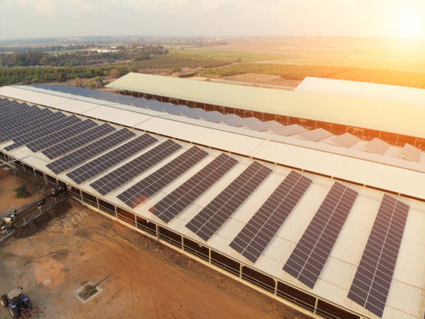 Sonnenkollektoren erneuerbare Energien Luftbild – Foto