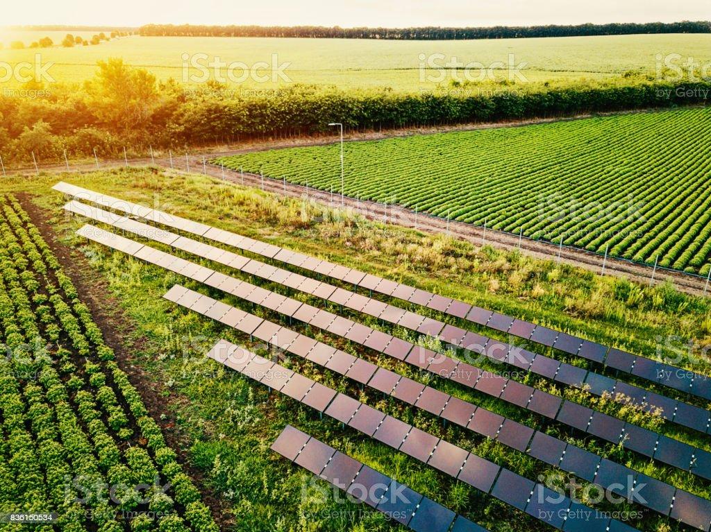 Solar power supply for the farm stock photo