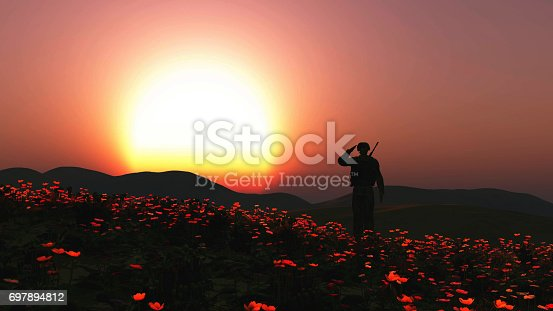 istock 3D soldier saluting in a field of poppies 697894812