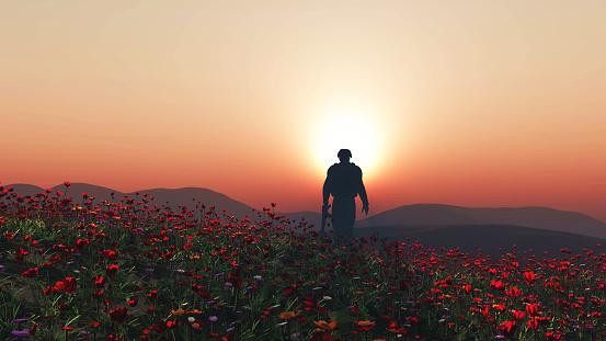 3D soldier walking in a poppy field