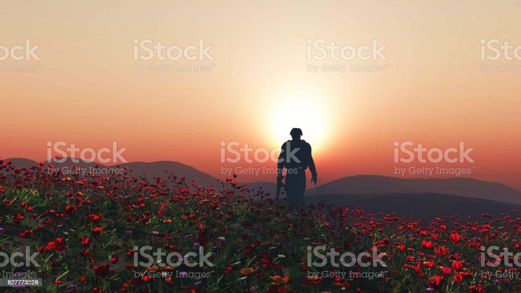 Soldat 3D marche dans un champ de pavot - Photo