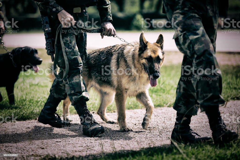 Soldat mit militärischer Arbeitshund. – Foto