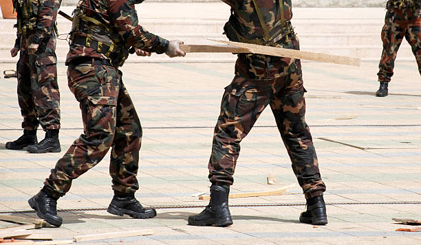 Best Soldiers Fighting With A Plank Stock Photos, Pictures & Royalty