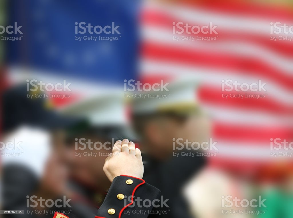 Soldiers Saluting stock photo