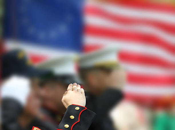 soldiers saluting - saluting stock photos and pictures