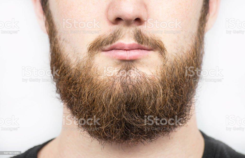Foto De Sólidos Homem Com Barba E Bigode Closeup Retrato Do