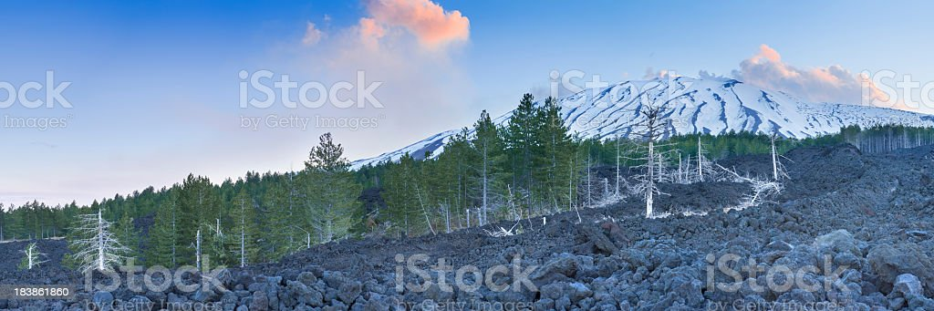 Solidified lava on the flanks of Mount Etna, Sicily, Italy royalty-free stock photo