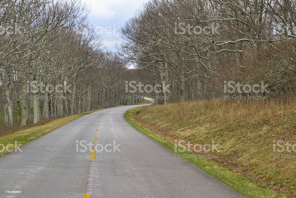 Solitary Blue Ridge Parkway royalty-free stock photo