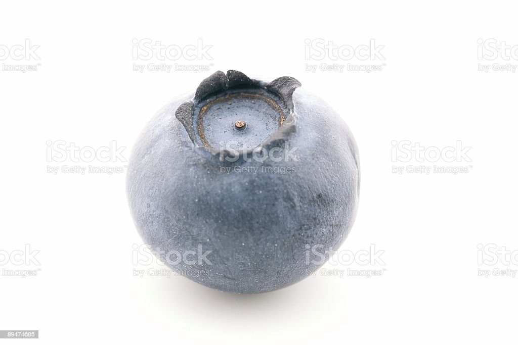 Solitary Blueberry stock photo