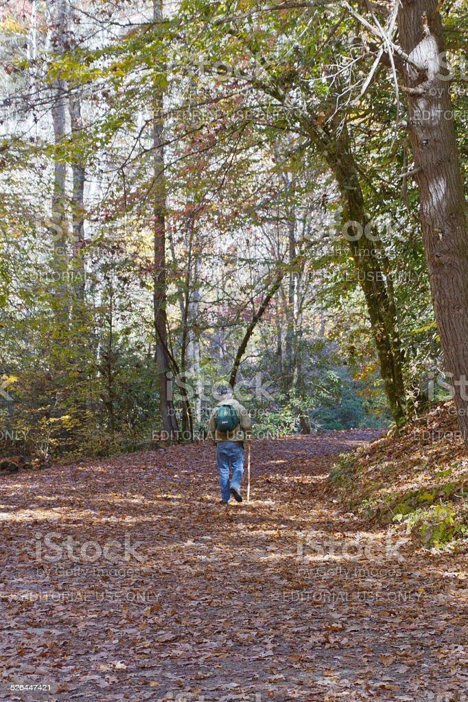 Solitary Hike stock photo