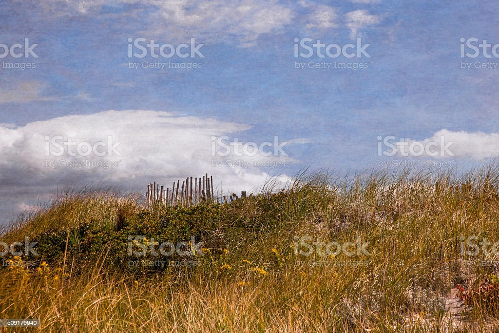 Solitary Sand Fence stock photo