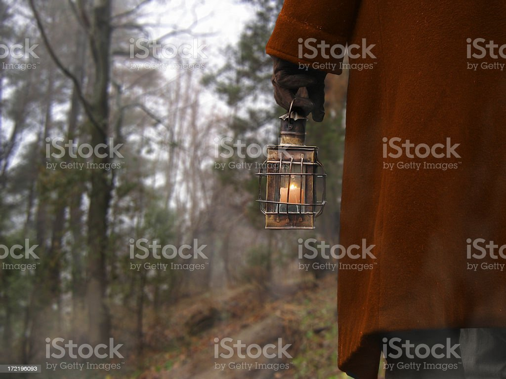 Solitary Wanderer royalty-free stock photo