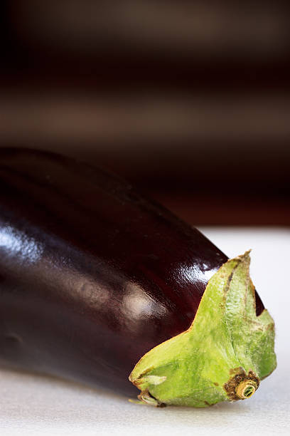 Solo eggplant stock photo