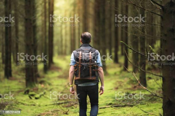 Photo of A solo traveler enjoying the Scandinavian nature