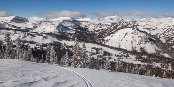 Solo up ski track looking west of Jackson hole. stock photo