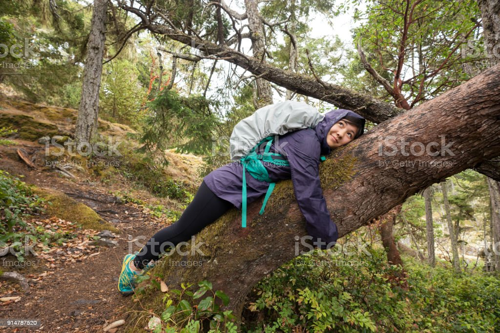 Solo, junge Frau Backpacker ruhen, umarmt Baum im Wald – Foto